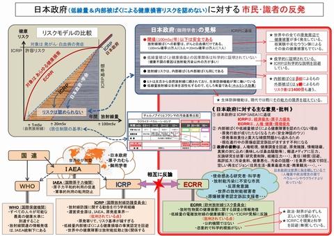 1280_日本政府の見解と識者の反発
